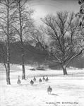 Picture of Surrey - Kew Gardens c1930s - N789