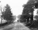 Picture of Surrey - Camberley, King's Ride c1910s - N1424