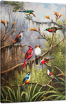 Picture of Animals - Colourful Birds - O056
